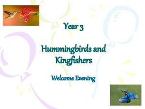 Year 3 Hummingbirds and Kingfishers Welcome Evening Year