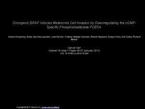 Oncogenic BRAF Induces Melanoma Cell Invasion by Downregulating