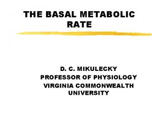 THE BASAL METABOLIC RATE D C MIKULECKY PROFESSOR