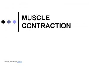 MUSCLE CONTRACTION 2016 Paul Billiet ODWS Muscle tissue
