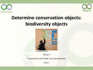 Determine conservation objects biodiversity objects Christina Lehmann 2014