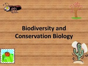 Biodiversity and Conservation Biology What is biodiversity the