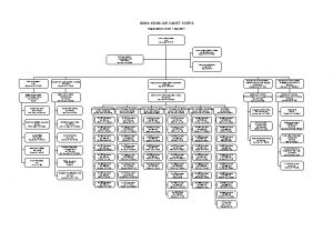 HONG KONG AIR CADET CORPS Organisation Chart 1