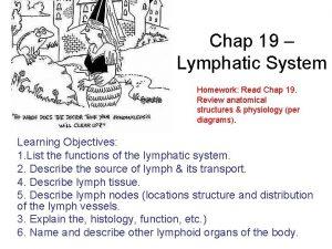 Chap 19 Lymphatic System Homework Read Chap 19