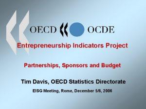 Entrepreneurship Indicators Project Partnerships Sponsors and Budget Tim