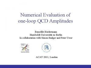 Numerical Evaluation of oneloop QCD Amplitudes Benedikt Biedermann
