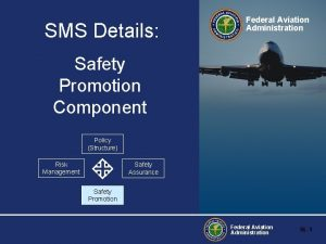 SMS Details Federal Aviation Administration Safety Promotion Component