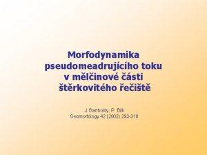 Morfodynamika pseudomeadrujcho toku v mlinov sti trkovitho eit
