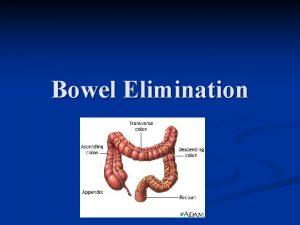 Bowel Elimination Bowel Elimination GI Tract is a