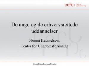De unge og de erhvervsrettede uddannelser Noemi Katznelson