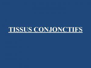 TISSUS CONJONCTIFS Tissu conjonctif origine msodermique tissu compos