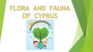 FLORA Quercus Alnifolia The national tree of the