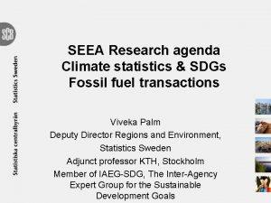 SEEA Research agenda Climate statistics SDGs Fossil fuel