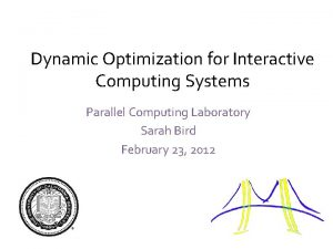 Dynamic Optimization for Interactive Computing Systems Parallel Computing