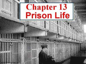 Chapter 13 Prison Life 2003 Prentice Hall Inc