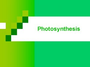 Photosynthesis Photosynthesis Plants capture light energy from the