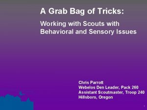 A Grab Bag of Tricks Working with Scouts
