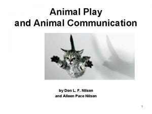 Animal Play and Animal Communication by Don L