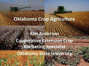 Oklahoma Crop Agriculture Kim Anderson Cooperative Extension Crop