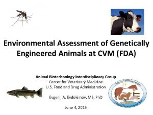 Environmental Assessment of Genetically Engineered Animals at CVM