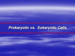 Prokaryotic vs Eukaryotic Cells Major Cell Types Prokaryotic