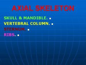 AXIAL SKELETON SKULL MANDIBLE n VERTEBRAL COLUMN n