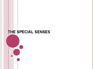 THE SPECIAL SENSES 5 SPECIAL SENSES 1 2