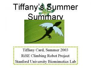 Tiffanys Summer Summary Tiffany Card Summer 2003 Ri