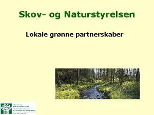 Skov og Naturstyrelsen Lokale grnne partnerskaber Lokale grnne