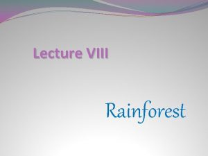 Lecture VIII Rainforest Rainforest Nobody is sure how