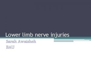Lower limb nerve injuries Sarah Awaisheh BAU Objectives