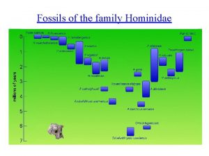 Fossils of the family Hominidae Australopithecus afarensis 3
