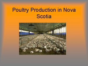 Poultry Production in Nova Scotia Terms to Know
