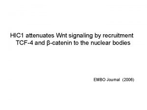 HIC 1 attenuates Wnt signaling by recruitment TCF4