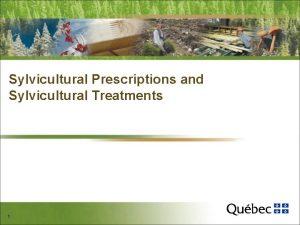 Sylvicultural Prescriptions and Sylvicultural Treatments 1 Plan of