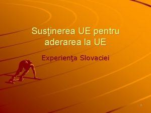 Susinerea UE pentru aderarea la UE Experiena Slovaciei