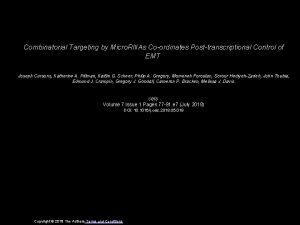Combinatorial Targeting by Micro RNAs Coordinates Posttranscriptional Control