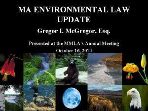 MA ENVIRONMENTAL LAW UPDATE Gregor I Mc Gregor