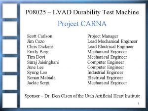 P 08025 LVAD Durability Test Machine Project CARNA