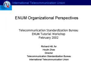 International Telecommunication Union ENUM Organizational Perspectives Telecommunication Standardization