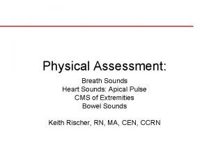 Physical Assessment Breath Sounds Heart Sounds Apical Pulse