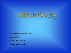 In collaboration with Anna Fiore Giulia Preverin Silvia