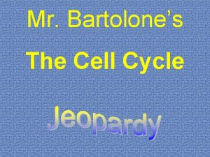 Mr Bartolones The Cell Cycle Cell Cycle Mitosis