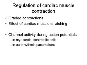 Regulation of cardiac muscle contraction Graded contractions Effect