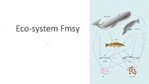 Ecosystem Fmsy Ecosystem productivity Basic ecosystem concepts 1