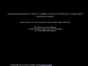 Glomerular Expression of Type IV Collagen Chains in