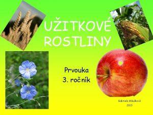 UITKOV ROSTLINY Prvouka 3 ronk Gabriela Mikulkov 2013