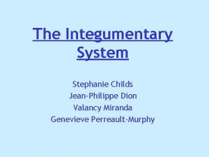 The Integumentary System Stephanie Childs JeanPhilippe Dion Valancy
