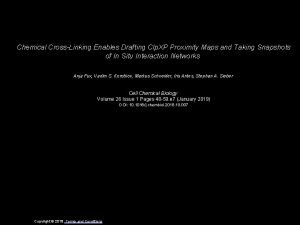 Chemical CrossLinking Enables Drafting Clp XP Proximity Maps