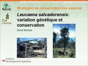 Guide de formation sur les ressources gntiques forestires